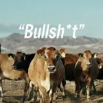 Brands Call Bullsh*t On Their Competitor's Alternative Energy Storytelling